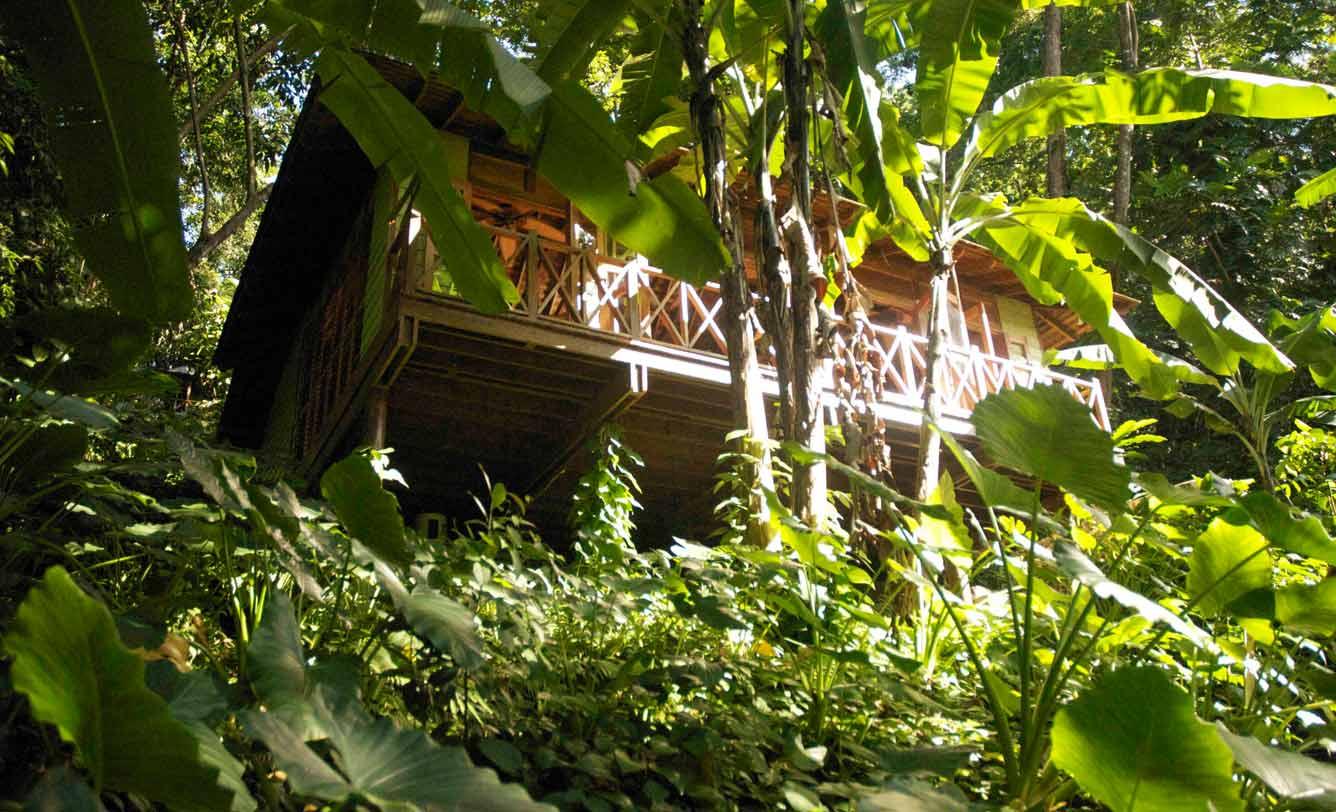Kanopi House & Kanopi House (Blue Lagoon Portland Jamaica) | Steelasophical ...