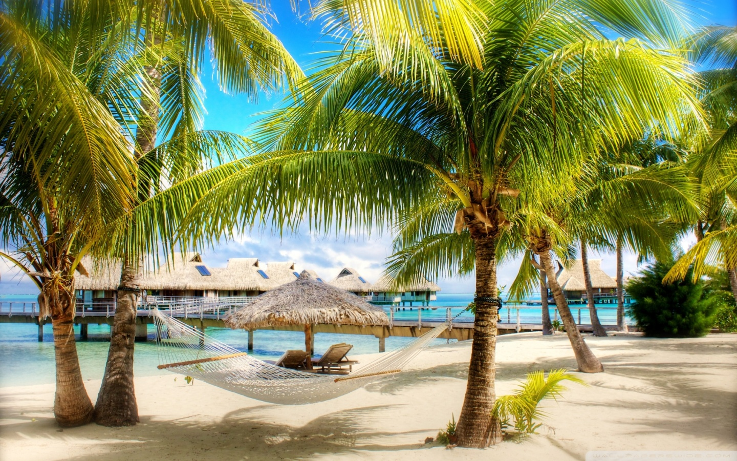 Interesting little known facts about the Caribbean