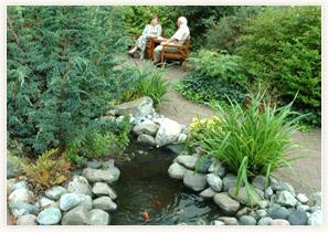 eastbourne-garden-Eastbourne-3-Eastbourne-hawthorns